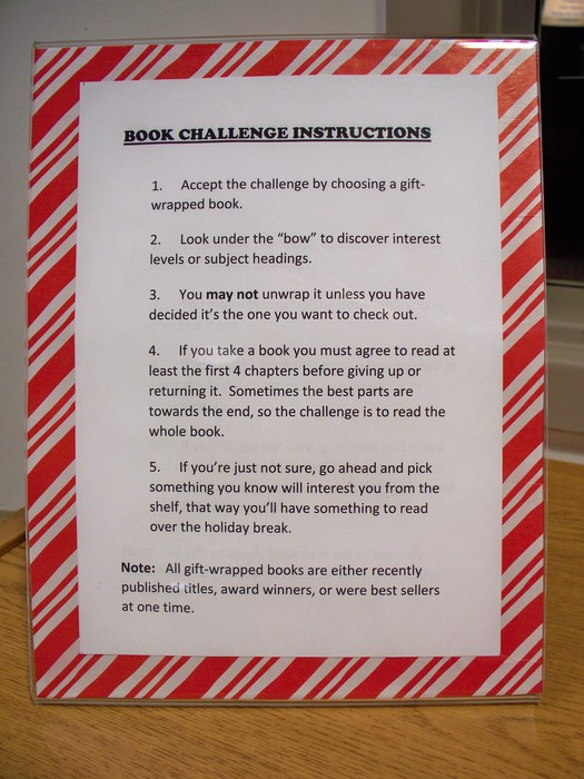 Book challenge instructions
